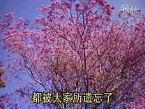 08幻灯片 空 生妙有