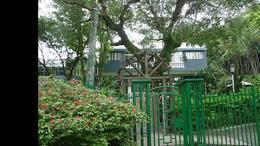 台北 士林官邸公园景观