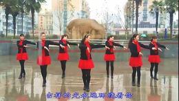 琪子广场舞团队演示    365个祝福  (团队版  86)