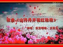 歌曲《山丹丹开花红艳艳》