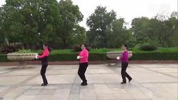 安庆舞之情 舞蹈 南泥湾