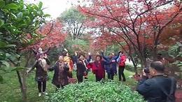 醴陵老年大学二班户外活动 带你潇洒带你嗨