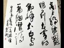 著名国画家张玉林画册页之二 金安传媒
