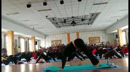 欧阳初级瑜伽哈他体式示范教学