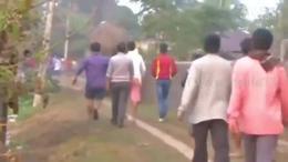 【发现最热视频】实拍!进击的大象上街路人吓尿了...