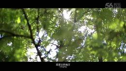 Sunshine组合成名曲《甜蜜具现式》MV官方正式版曝光