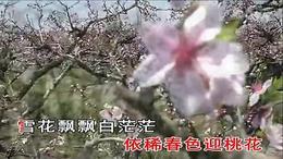 168京城三月飘雪花 D调 千里马演唱版