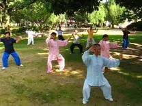 杨式传统小架46式太极拳