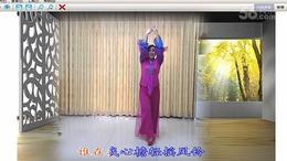 琪子广场舞  江南夜色浓   个人版 (92)
