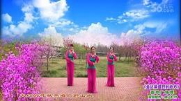 荟萃广场舞《金达莱盛开的地方》编舞:応子 制作:映山红叶