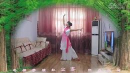 菁百合广场舞【风筝误】编舞:静静