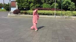 武当十三势   演练陈庆琳