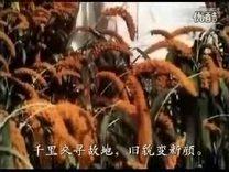 纪念毛主席诞辰125周年晚会 爱国联盟 西克制作 2018年12月26日