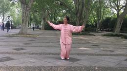 太极八法五步演练陈庆琳
