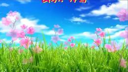 冷雪广场舞【草原嗨歌】编舞:青儿 演示:冷雪...