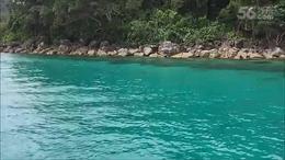 泰国 象岛 快艇出海