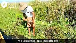 緬甸輕功水上飄捉魚 水鄉澤國收入微但快樂
