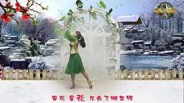 湖南君悦广场舞 《雪花》 编舞:格格