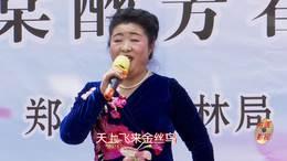 郑州第十一届海棠文化节 碧沙乐团邓秋香演唱 歌曲《情深意长》