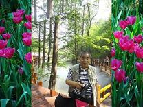 北京植物园( 红)