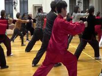 迷踪拳技术提高教学训练之二  黄伯文摄制