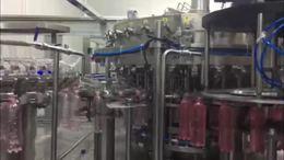粉色可乐饮料生产线,碳酸饮料生产线介绍