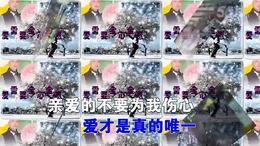 《爱需要全心全意》歌曲池鸿议相册 视频