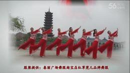 张春丽广场舞《李》编舞:张春丽「广州队演绎」