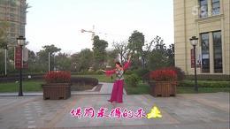 锦文广场舞《阿妈佛心上的一朵莲》