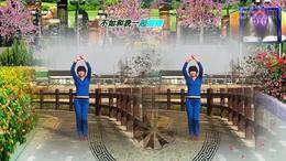 114上海阿英广场舞《电音之王》编舞:开稳 视频制作 演示:阿英