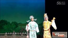 越剧-孟丽君-游上林(夜静个人版)
