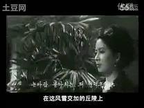 朝鲜电影《无名英雄》插曲:无名之花