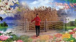 河北紫晶广场舞《心跳》编舞杨丽萍