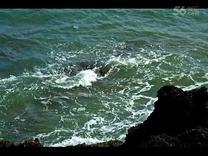 美丽的涠洲岛