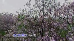 吕剧戏歌:念奴娇、追思焦裕禄【原唱:王月华(天歌流韵)】