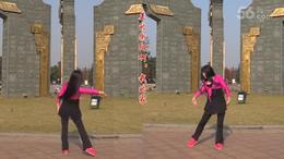 美的衡阳 广场舞教学视频
