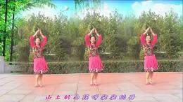 天云广场舞《山花朵朵开》编舞:凤凰六哥 制作珍儿