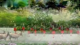応子广场舞《远古的月光》