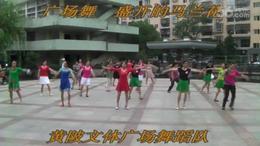 黄陂文体广场晨练舞蹈   盛开的马兰花