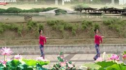 广场舞《江南梦》(莲子习舞)DVD