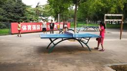 桐桐、牛牛打乒乓球 02