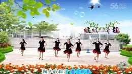 荟萃广场舞《暖暖的幸福》编舞:王梅 制作:由文