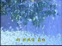 赵传 雪花女神龙主题曲VCD OK