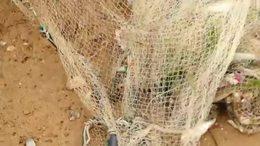 日照大海撒网捕鱼IMG_5447
