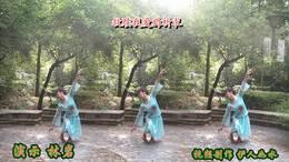 林岩广场舞《水倒流》编舞:林岩(附背面演示)