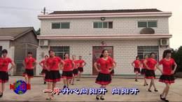红梅赞 枝江市村韵文化艺术团 宜昌乡韵文化传媒张洪芹摄制