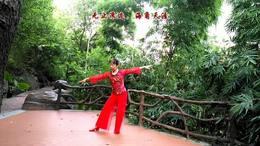 林岩广场舞《伙伴》编舞:林岩 附背面演示