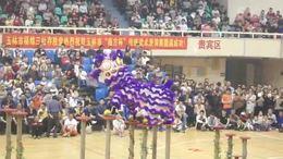 传统武术表演赛10