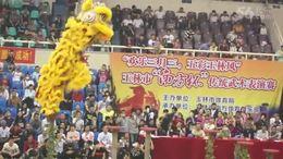 传统武术表演赛5