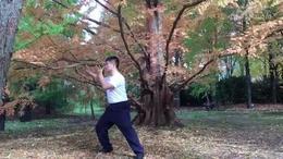 陈氏太极拳二十二式示范,张恒义老师精彩演练!